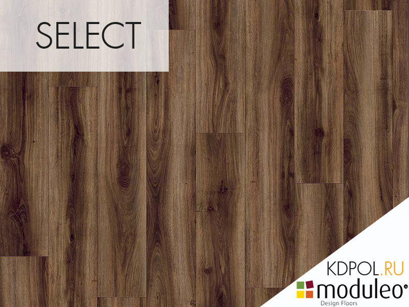 Виниловая плитка дуб Classic Oak 24877 коллекции Select