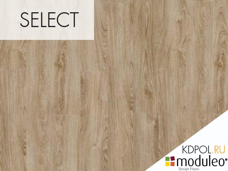 Виниловая плитка дуб Midland Oak 22231 коллекции Select